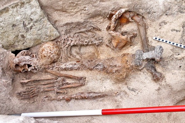 The second Viking burial, from http://www.orkneyjar.com/archaeology/2015/09/17/remains-of-papay-viking-recovered-as-search-continues-for-more-graves/