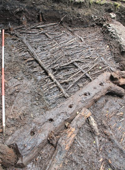 Branch-wood bundles providing the foundation of the flooring (AOC Archaeology Website)
